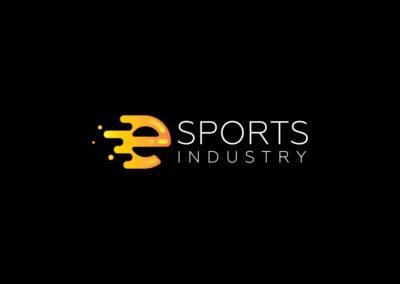 eSports Industry South Africa – Logo & Website Design